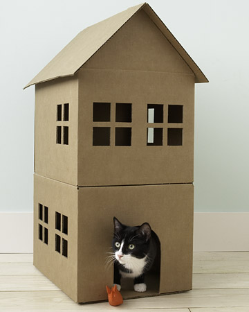 martha stewart cat playhouse