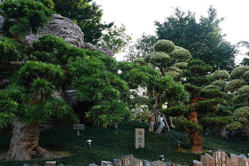 Nan lian Garden, traditional chinese garden in Diamond Hill - Hong Kong